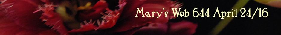 Mary's Web radio show